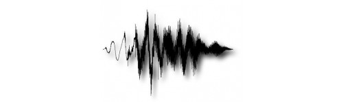 Servizi audio