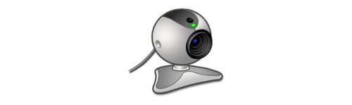 Videoconferenza e multiconferenza
